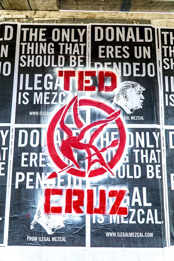 Ted Cruz mockingjay in L.A.